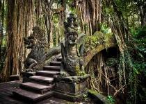 Dovolena na Bali s ubytováním s odletem z Vídně za 24 990 Kč