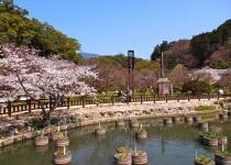 Japonsko: levné letenky - Fukuoka s odletem z Prahy již od 10 990 Kč
