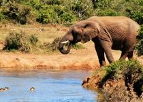 Jižní Afrika: levné letenky - Johannesburg s odletem z Dublinu již od 8 637 Kč