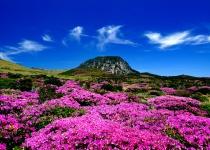 Jižní Korea: levné letenky - ostrov Jeju, Soul s odletem z Paříže již od 7 940 Kč