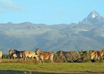 Keňa: levné letenky - Nairobi již od 11 945 Kč s odletem z Milána