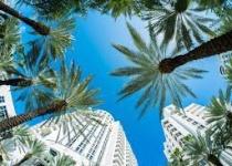 Levné letenky Madrid  - Miami a zpět za 5790 Kč