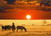 Levné letenky Vídeň - Madrid - Nairobi - Vídeň od 16 522 Kč