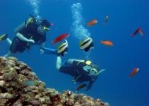 Potápění v Dahabu