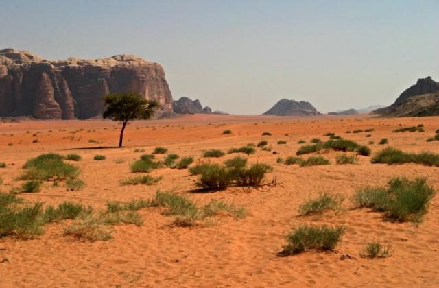 Jordánské měsíční údolí
