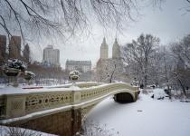 Co dělat v zimě v New Yorku