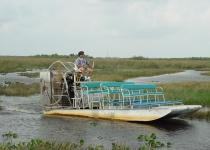 Everglades, divoká tvář Floridy