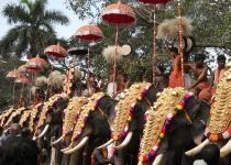 Pooram: největší festival slonů v Indii