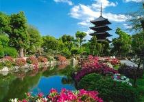 Dovolená v Japonsku