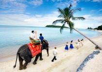 Koh Samui - ostrov pro zamilované
