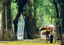 Hanoj, skvělé seznámení s Vietnamem
