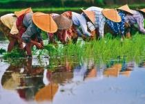 Vietnam – základní informace