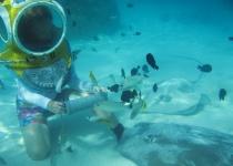 Cestování po ostrovech ve Francouzské Polynésii