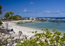 Zajímavosti o ostrově Nauru