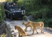 Rezervace a parky Jihoafrické republiky