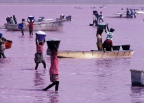 Růžové jezero v Senegalu