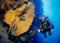 Saba – nejmenší ostrov v Karibiku