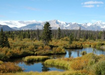 Dovolená za krásami Aljašky