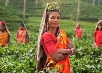 Poprvé v Bangladéši