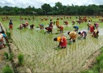 Skryté klenoty Bangladéše