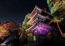 Tokio – město kontrastující krásy
