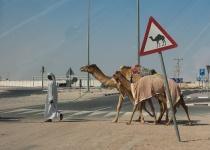 Katar – základní informace