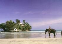 Dva týdny dovolené na Srí lance