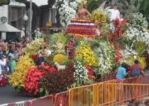 Madeira: Květinový festival je symbolem jara