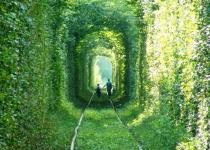 Navštivte tunel lásky na Ukrajině