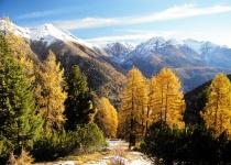Sto let Švýcarského národního parku