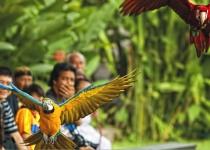 Asie: nejnovější divy a nejkrásnější ostrovy