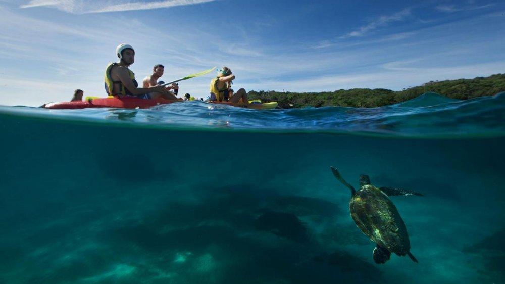 Tropické destinace, kde se můžete naučit potápět 2