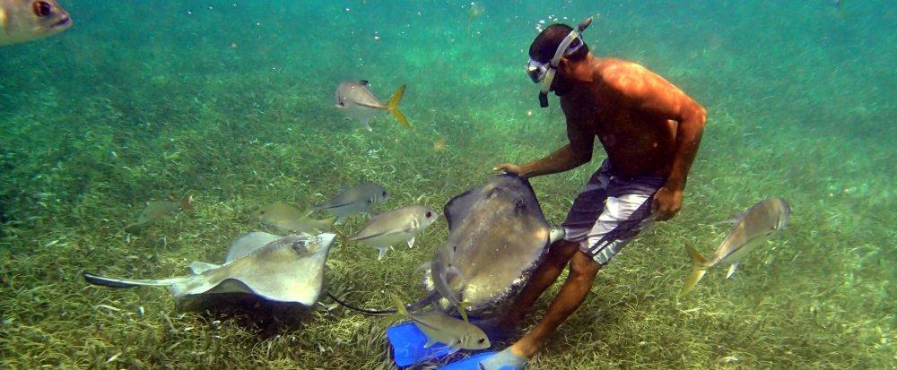 Tropické destinace, kde se můžete naučit potápět 5