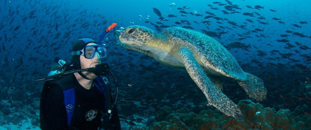 Tropické destinace, kde se můžete naučit potápět 7