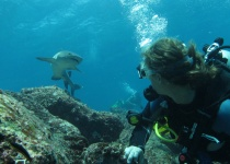 Tropické destinace, kde se můžete naučit potápět