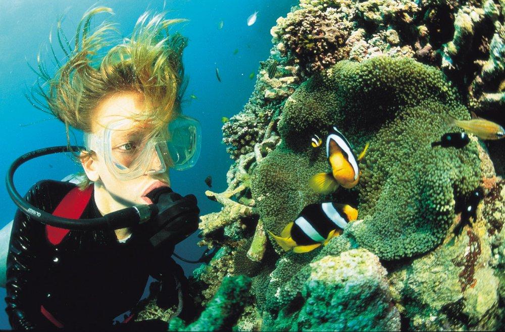 Tropické destinace, kde se můžete naučit potápět 8