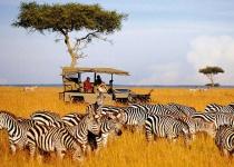 Safari v Keni - oáza pro srdce cestovatele