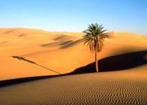 Sahara - poušť snů